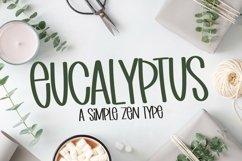Web Font Eucalyptus - A Simple Zen Type Product Image 1