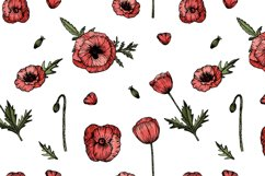 Wedding collection with hand drawn poppy flowers Product Image 4