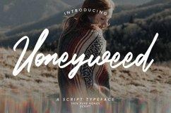 Web Font Honeyweed - Script Typeface Font Product Image 1