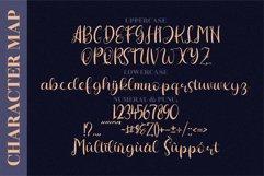 Hiratheria - Beautiful Script Font Product Image 2