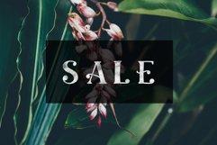 Ciera watercolor svg font family & floral logos clipart Product Image 4
