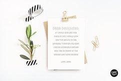 """""""SPRING BREAK"""" Sketch Font - Single Line/Hairline Font Product Image 5"""