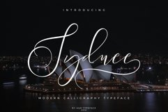 Sydnee Modern Calligraphy Font Product Image 1
