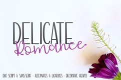 Delicate Romance Font Duo Product Image 1