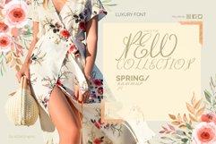 Efeymen Luxury Signature Font Product Image 6