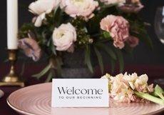 BEST SELLER Wedding SVG Bundle, Engagement SVG bundle Product Image 6