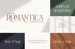 The Elegant Font Bundle - Vol 01 Product Image 2