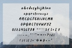 Montego Bay - a lovely paint brushed script font Product Image 4