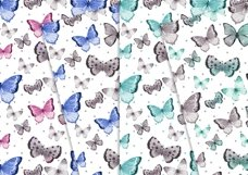 Sweet Butterflies 12x12 Product Image 3