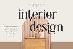 Gingko Ligature Typeface Product Image 2