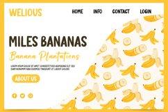 Banana Pastry - Brush Display Font Product Image 2
