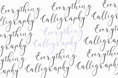 Violether Modern Calligraphy Font Product Image 2