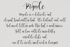 Pigade   handwritten font Product Image 2