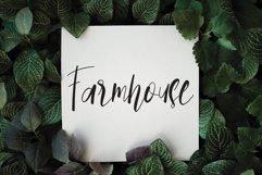 Paradise Product Image 5
