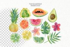 Watercolor Tropics Clipart Product Image 3