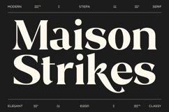 Stiepa   Modern Serif & Bonus Sans Product Image 2
