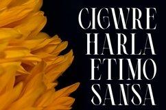 Cigero   Modern Serif Product Image 3