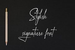 Zattany | Stylish Signature Font Product Image 2