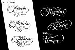 The Briantone - Elegant Script Font Product Image 2