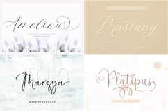 HANDWRITTEN FONTS COLLECTION Product Image 2