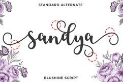 Blushine Script Product Image 3