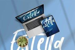 Web Font Belaney - A Stylish Brush Font Product Image 2