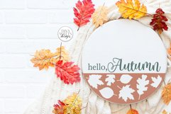 Hello Autumn SVG | Fall Round Sign Design Product Image 2