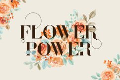Sonder Serif Typeface - 5 weights Product Image 2