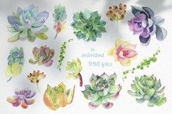 Succulent clipart / Watercolor succulent wreath / Floral png Product Image 5