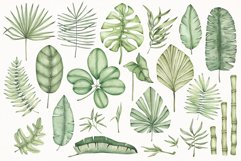 """Watercolor ClipArt """"Tropical Leaves"""" Product Image 2"""