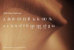 Amelaryas Typeface Product Image 2
