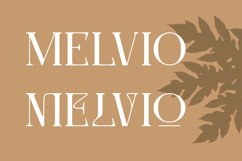 Molten   Modern Serif Product Image 2