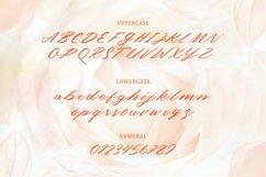 Sweet June - Lovely Script Font Product Image 4