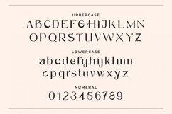 Marsela - Modern & Elegant Serif Product Image 2
