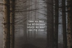 Into the Wild Serif Font Product Image 2
