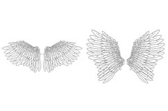 20 Beautiful Feather Angel Wings Illustration Collection SVG Product Image 2