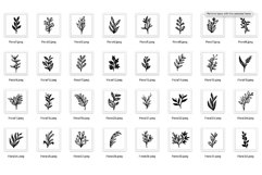 200 Florals Procreate Brush Stamp Product Image 2
