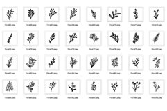 200 Florals Procreate Brush Stamp Product Image 5