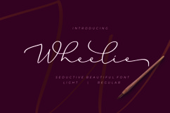 Wheelie Product Image 1