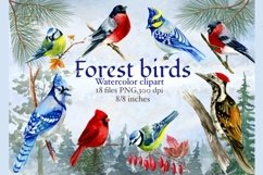 Forest birds watercolor clipart, Red cardinal. Product Image 2