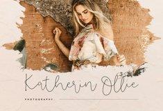 Danyla Stylish Signature Font Product Image 6