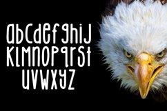 Web Font Eagle Eyes Product Image 3