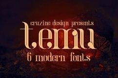 temu - Modern Font Product Image 1