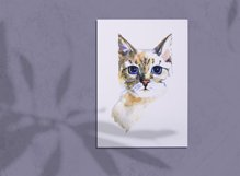 Watercolor cats clipart Product Image 4
