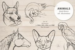 Animals, Set of 5 ink illustrations of pets, Vector clip art Product Image 1