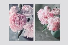 Pink Peonies Collection Product Image 6