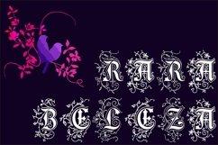 Rara Beleza Product Image 1