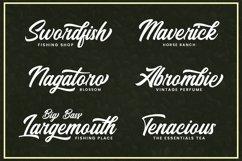 Web Font Santiago Product Image 4