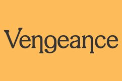 Vengeance Product Image 1