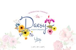 Daesy Script Challigrapy Font Product Image 1